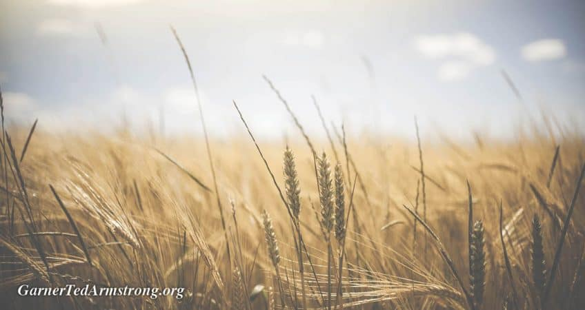 Why God Commands Our Presence at His Feast! – Garner Ted Armstrong